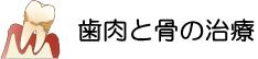 横浜の歯科・歯医者 横浜山手デンタルクリニックの歯肉と骨の治療