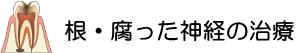 横浜の歯科・歯医者 横浜山手デンタルクリニックの根・腐った神経の治療
