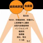 横浜の歯科 歯医者 横浜山手デンタルクリニック 口の細菌(歯周病原菌・虫歯菌)から発症する病気