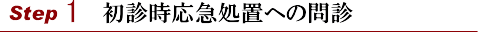 横浜山手デンタルクリニック 診療の流れstep1初診時応急処置への問診